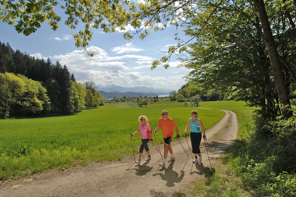 Nordic Walking am Wörthersee